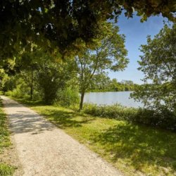 camping-vendee-chemin-lac-chausseliere